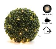 Lumineo LED filet lumineux buxus 50 cm blanc chaud