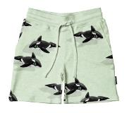 Snurk Shorts SNURK Enfants Orca Green-Taille 140