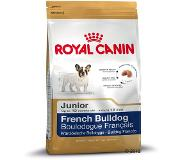 Royal Canin Breed French Bulldog Junior pour chiot - 3 kg