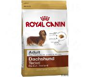 Royal Canin Dachshund Adult pour chien - 1,5 kg