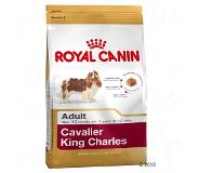 Royal Canin Breed Cavalier King Charles Adult pour chien - 1,5 kg