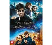 Dvd WARNER HOME VIDEO Harry Potter Complete + Fantastic Beasts DVD