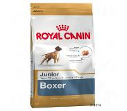 Royal Canin Breed Boxer Junior pour chiot - 12 kg