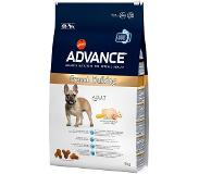 Affinity advance Advance French Bulldog pour chien - 2 x 9 kg