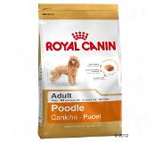 Royal Canin Breed Poodle Adult pour chien - 7,5 kg