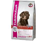 Eukanuba Adult Breed Specific Labrador Retriever pour chien - 12 kg