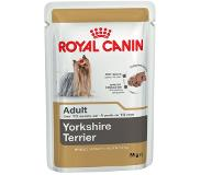 Royal Canin Breed Yorkshire Terrier pour chien - 12 x 85 g