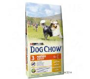 Dog chow Purina Dog Chow Mature Adult, poulet pour chien - 14 kg